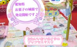 大人気のプリンセスマスクが ついに8月15日より「愛知県犬山市 お菓子の城」で発売を開始しました!